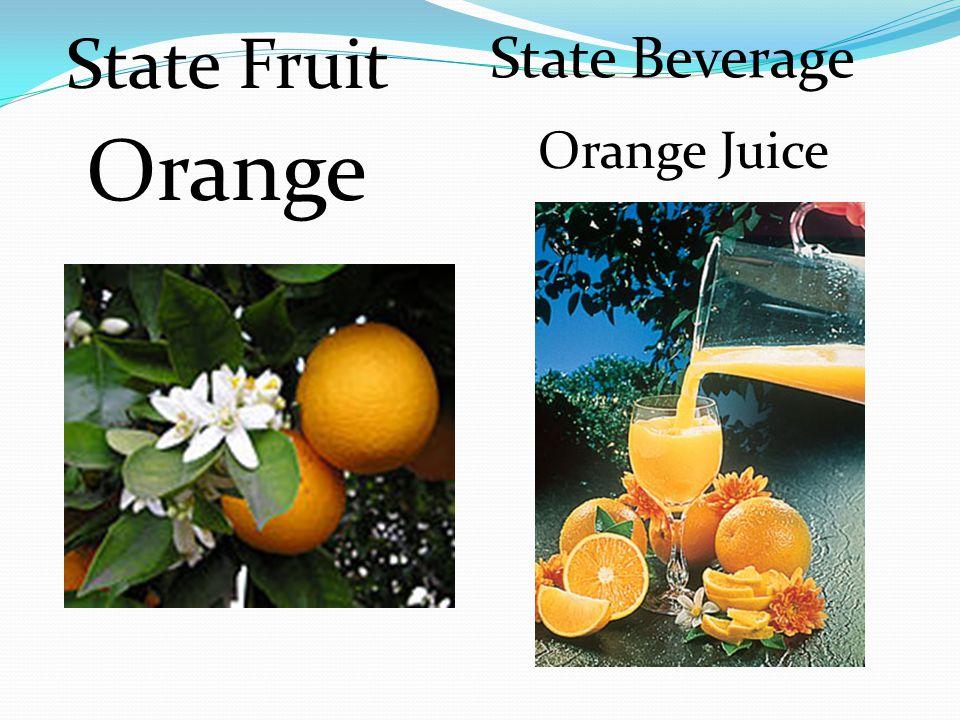 State Fruit State Beverage Orange Orange Juice