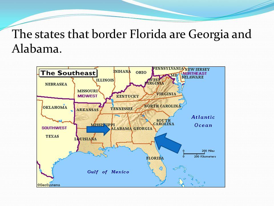 The states that border Florida are Georgia and Alabama.