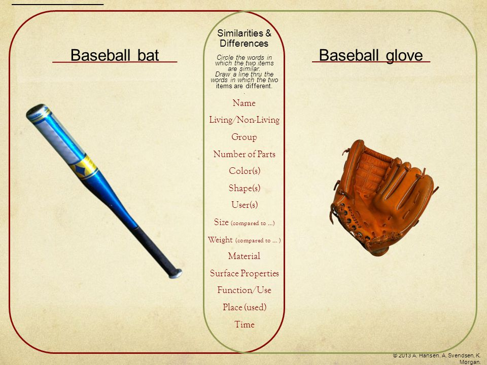 Baseball batBaseball glove Similarities & Differences Circle the words in which the two items are similar.