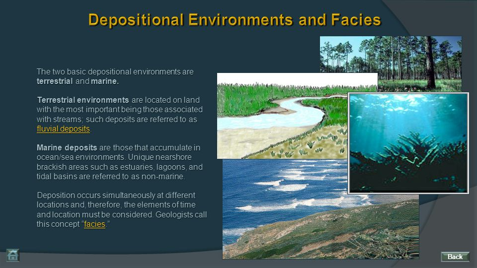The two basic depositional environments are terrestrial and marine. Terrestrial environments are located on land with the most important being those a