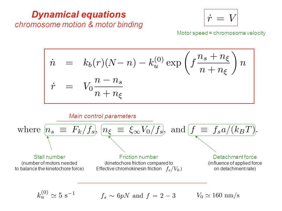 Dynamical system Linear Dynamics Stability of the fixed point gives fixed point & Stability of the fixed point Linear stability analysis Eigenvalues