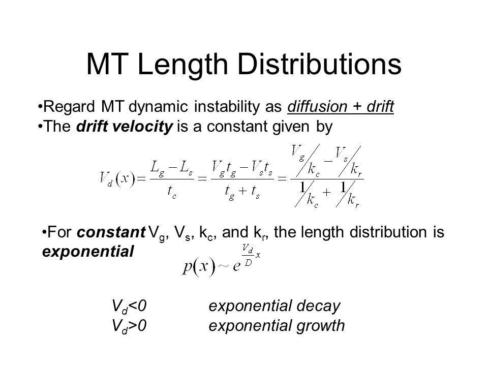 MT Length Distributions Regard MT dynamic instability as diffusion + drift The drift velocity is a constant given by For constant V g, V s, k c, and k r, the length distribution is exponential V d <0exponential decay V d >0exponential growth