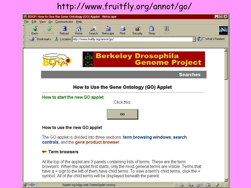 http://www.fruitfly.org/annot/go/