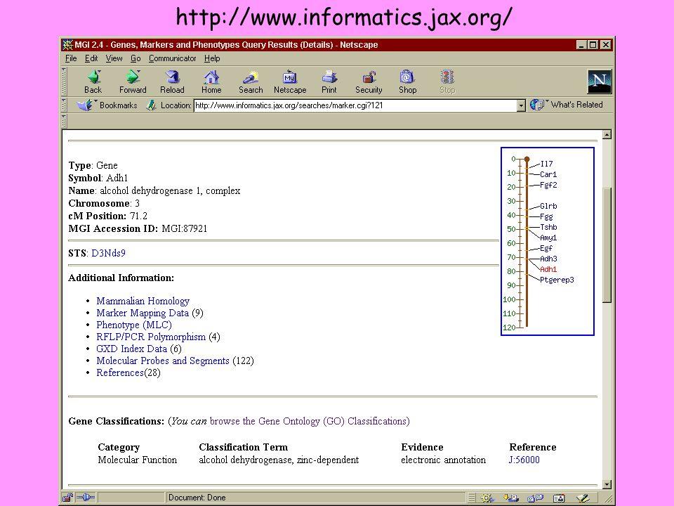 http://www.informatics.jax.org/