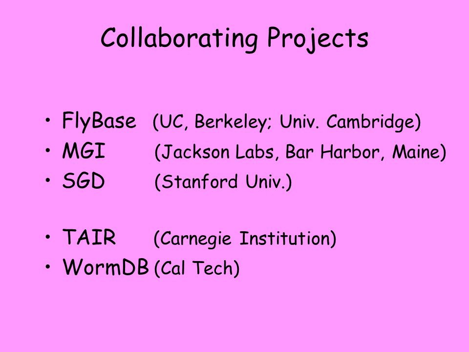Collaborating Projects FlyBase (UC, Berkeley; Univ.