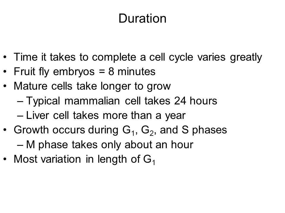 Duration Time it takes to complete a cell cycle varies greatly Fruit fly embryos = 8 minutes Mature cells take longer to grow –Typical mammalian cell