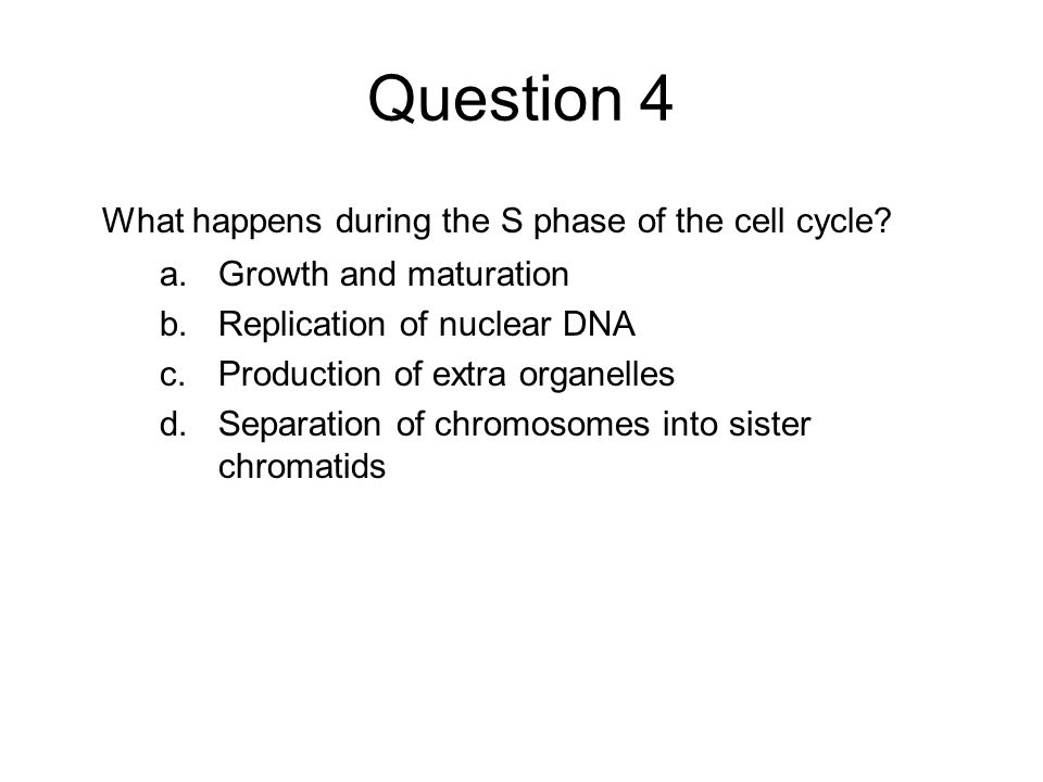Question 4 What happens during the S phase of the cell cycle? a.Growth and maturation b.Replication of nuclear DNA c.Production of extra organelles d.