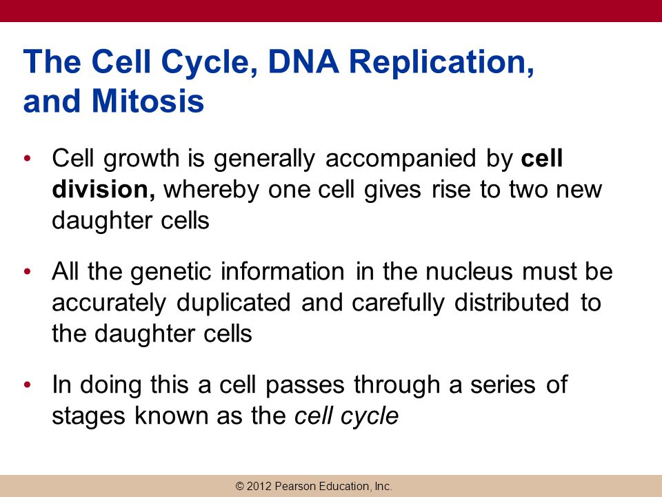 © 2012 Pearson Education, Inc. The Cell Cycle, DNA Replication, and Mitosis Cell growth is generally accompanied by cell division, whereby one cell gi