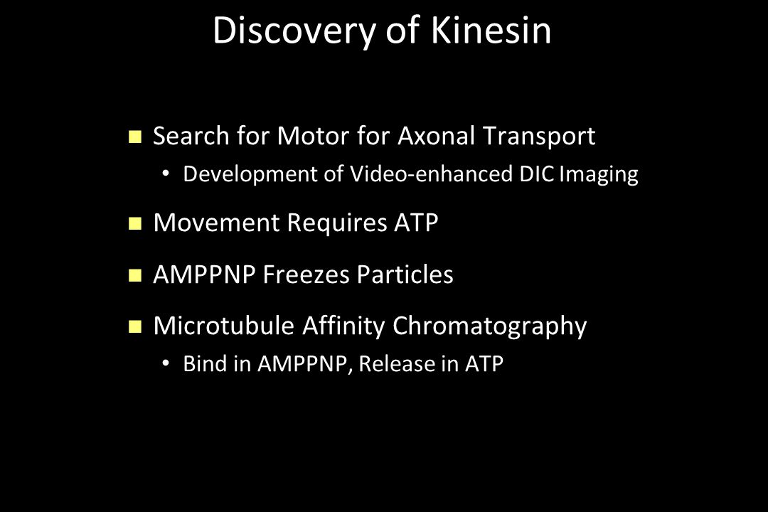 Discovery of Kinesin n Search for Motor for Axonal Transport Development of Video-enhanced DIC Imaging n Movement Requires ATP n AMPPNP Freezes Partic
