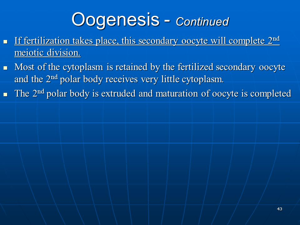 Oogenesis - Continued If fertilization takes place, this secondary oocyte will complete 2 nd meiotic division. If fertilization takes place, this seco