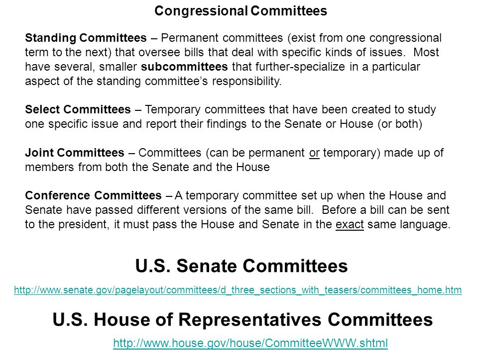 What do standing committees do.