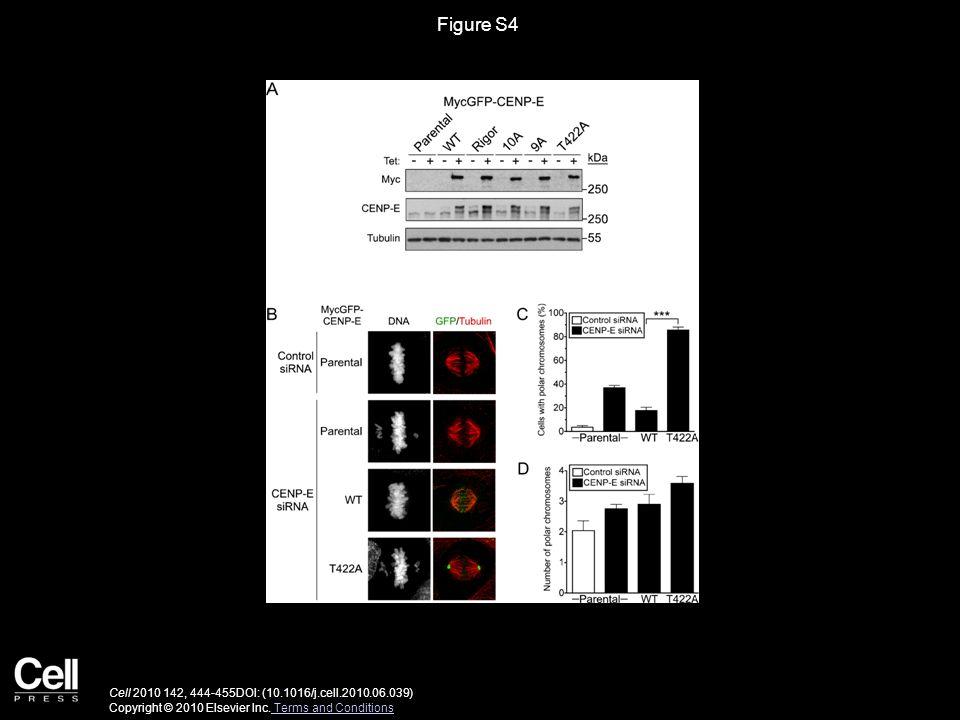 Figure S4 Cell 2010 142, 444-455DOI: (10.1016/j.cell.2010.06.039) Copyright © 2010 Elsevier Inc.