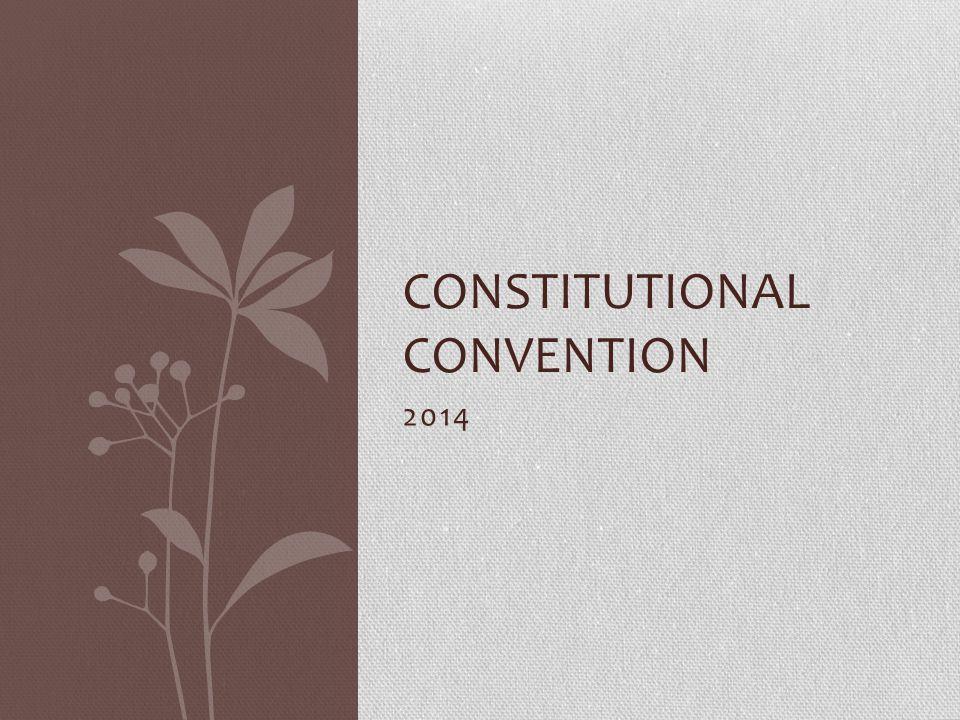 2014 CONSTITUTIONAL CONVENTION