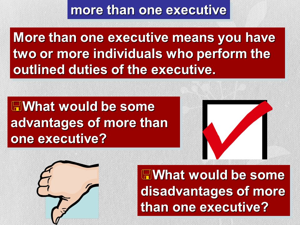 one executive One executive means you have one head of government (who we call a president) who performs the outlined duties of the executive. <What w