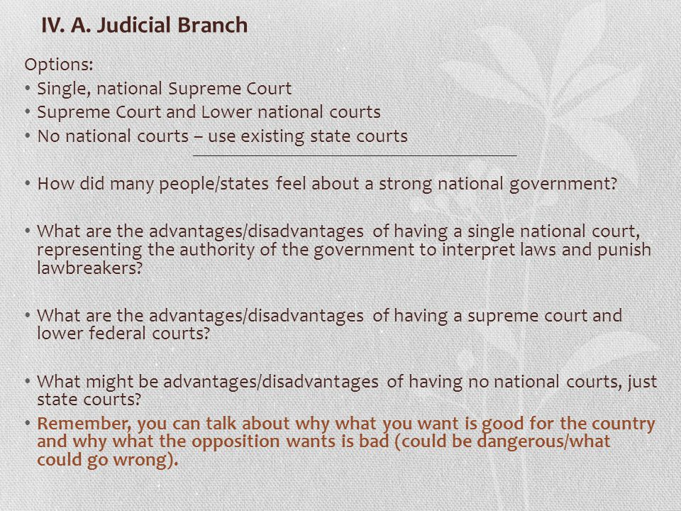 IV. A. Judicial Branch Options: Single, national Supreme Court (will have states courts) Supreme Court and Lower national courts (will have state cour