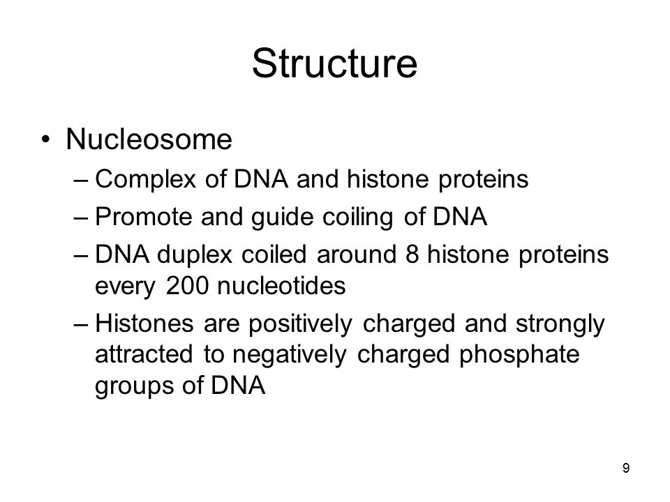 Structure Nucleosome –Complex of DNA and histone proteins –Promote and guide coiling of DNA –DNA duplex coiled around 8 histone proteins every 200 nuc