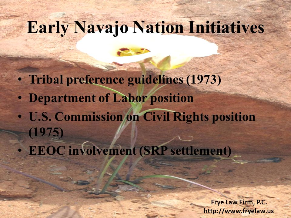 Early Navajo Nation Initiatives Tribal preference guidelines (1973) Department of Labor position U.S. Commission on Civil Rights position (1975) EEOC
