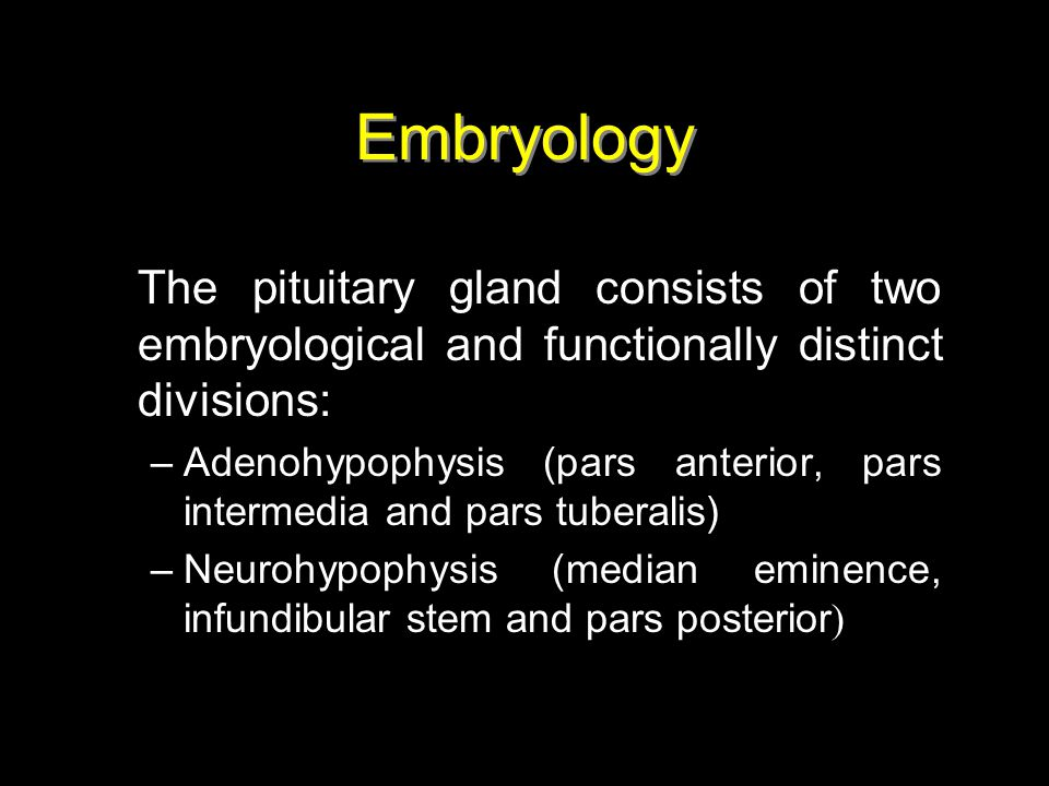 Embryology The pituitary gland consists of two embryological and functionally distinct divisions: –Adenohypophysis (pars anterior, pars intermedia and
