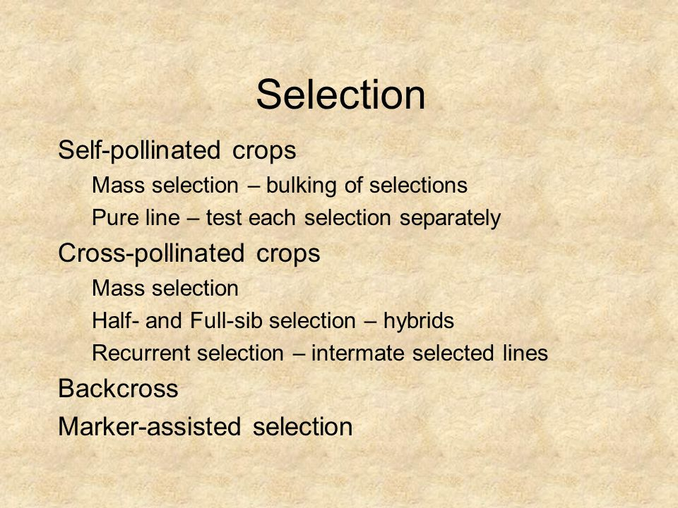 Selection Self-pollinated crops Mass selection – bulking of selections Pure line – test each selection separately Cross-pollinated crops Mass selectio