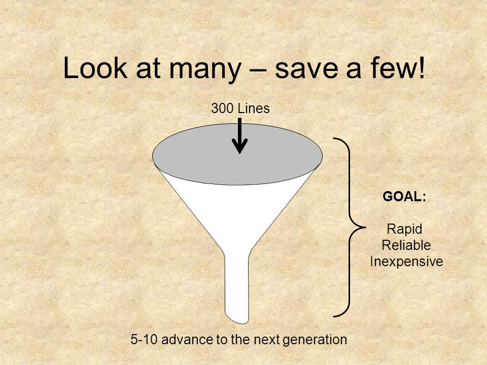 Look at many – save a few! 300 Lines 5-10 advance to the next generation GOAL: Rapid Reliable Inexpensive