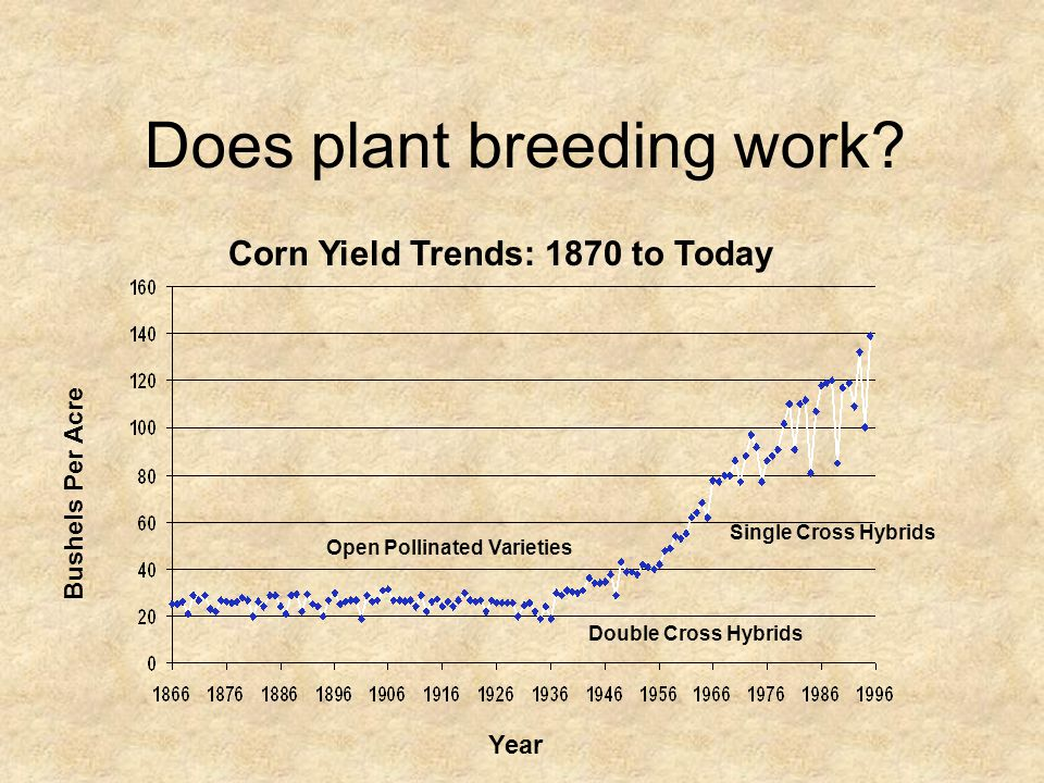 Bushels Per Acre Year Open Pollinated Varieties Double Cross Hybrids Single Cross Hybrids Does plant breeding work? Corn Yield Trends: 1870 to Today