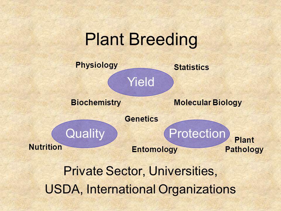 Plant Breeding Private Sector, Universities, USDA, International Organizations Biochemistry YieldProtectionQuality Entomology Physiology Plant Patholo