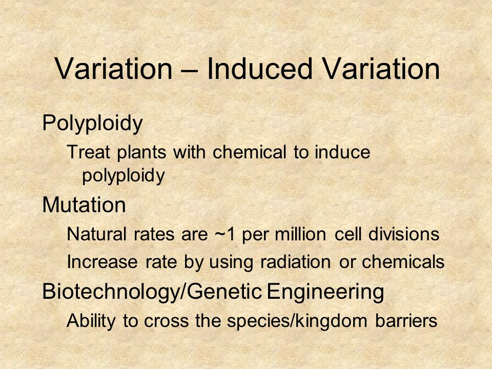 Variation – Induced Variation Polyploidy Treat plants with chemical to induce polyploidy Mutation Natural rates are ~1 per million cell divisions Incr