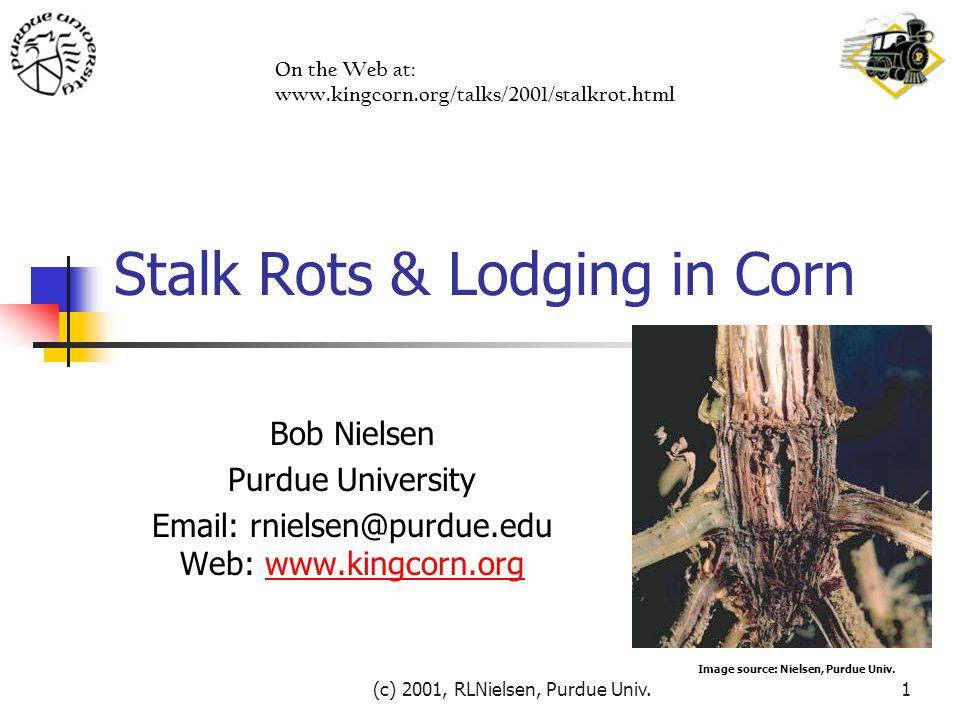 (c) 2001, RLNielsen, Purdue Univ.1 Stalk Rots & Lodging in Corn Bob Nielsen Purdue University Email: rnielsen@purdue.edu Web: www.kingcorn.orgwww.king