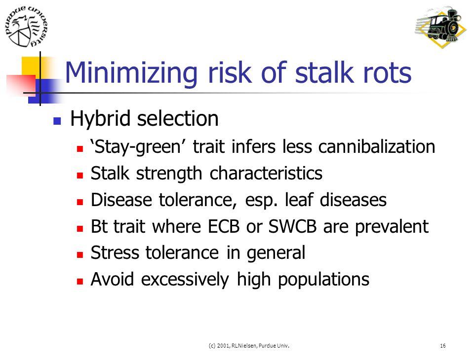 (c) 2001, RLNielsen, Purdue Univ.16 Minimizing risk of stalk rots Hybrid selection 'Stay-green' trait infers less cannibalization Stalk strength chara