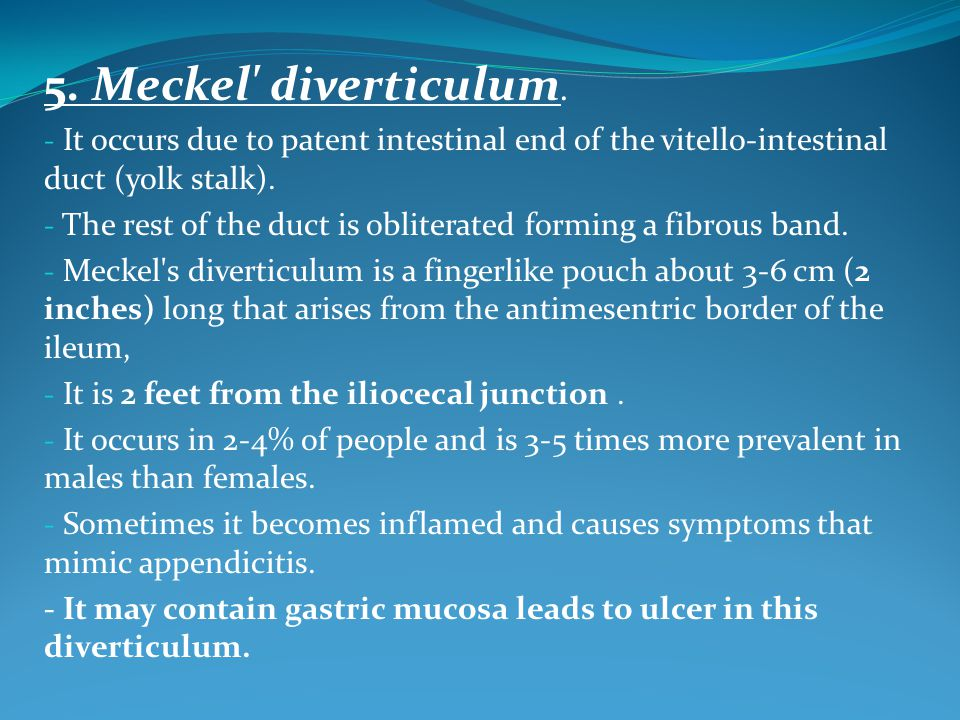 Development& structure: - It develops as a blind diverticulum from the caudal part of the yolk sac (endodermal origin).