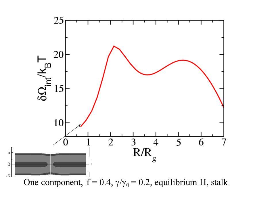 One component, f = 0.4,  /  0 = 0.2, equilibrium H, stalk