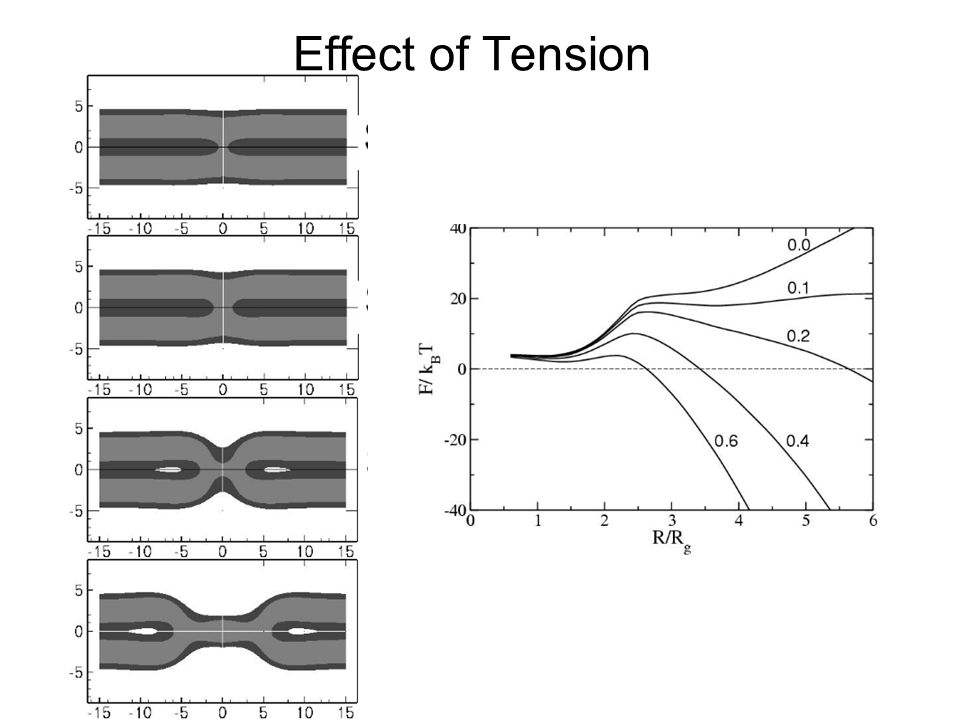Effect of Tension