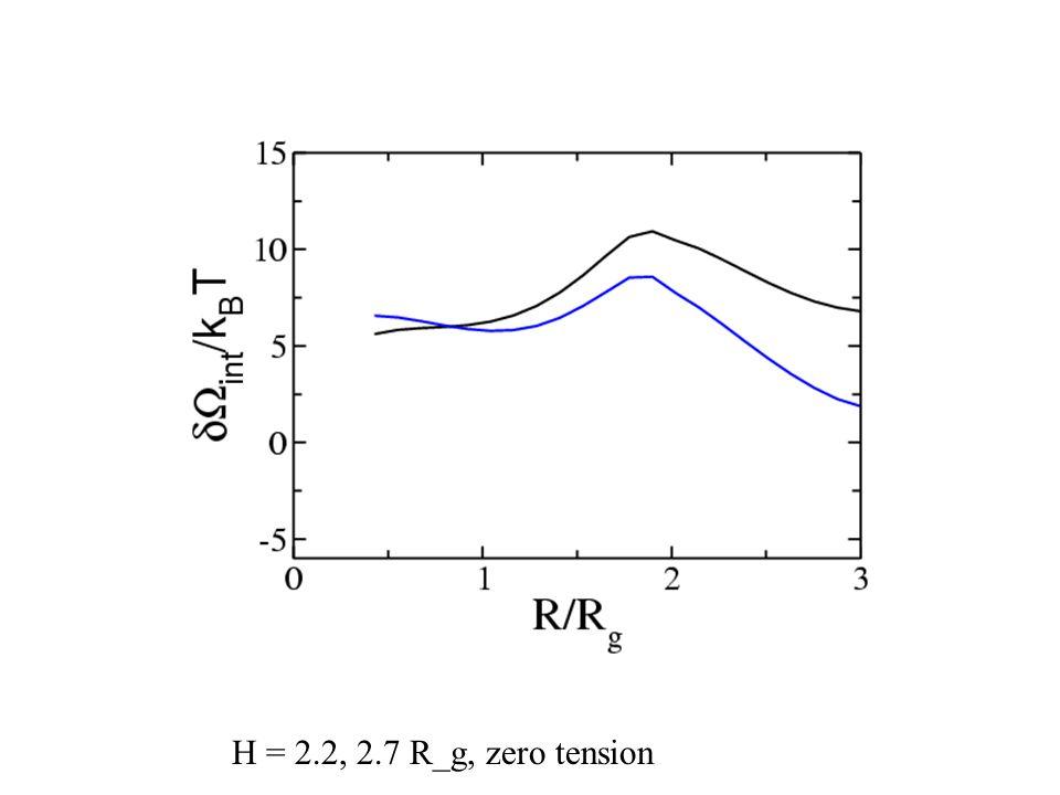 H = 2.2, 2.7 R_g, zero tension