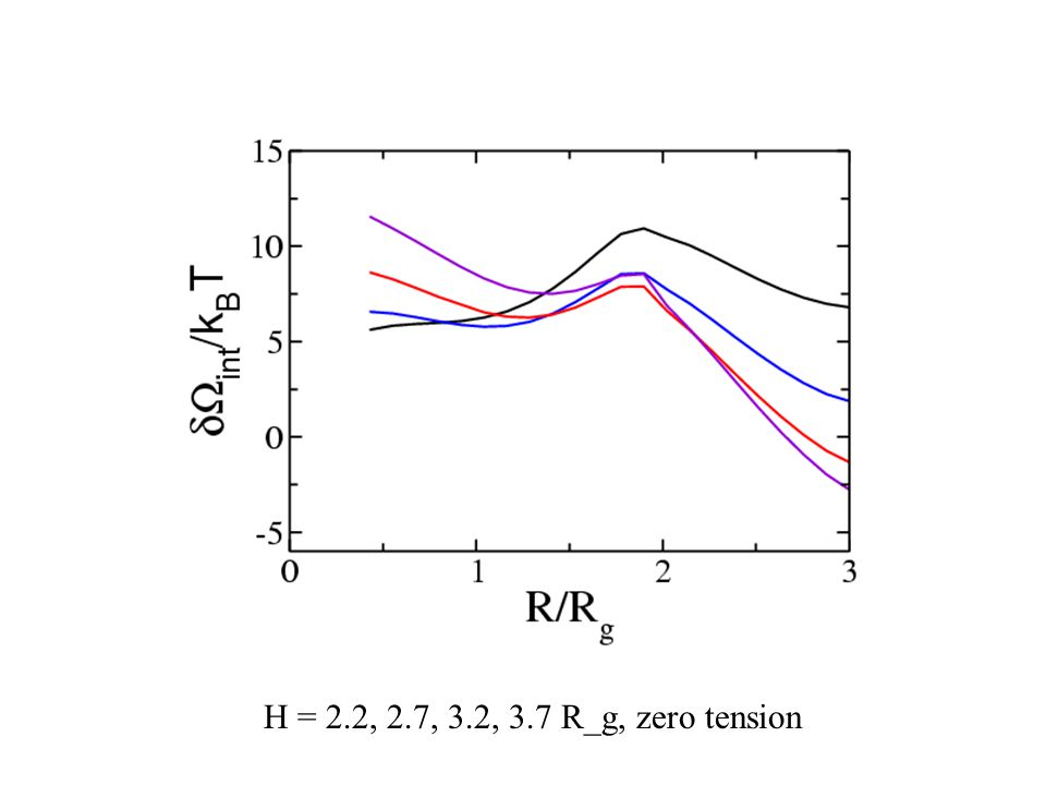 H = 2.2, 2.7, 3.2, 3.7 R_g, zero tension