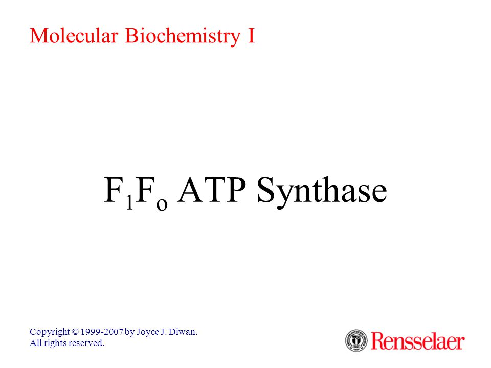F 1 F o ATP Synthase Copyright © 1999-2007 by Joyce J.