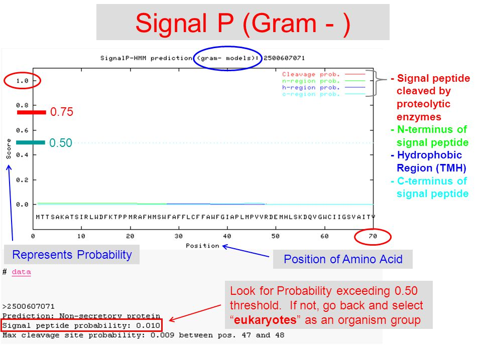 Signal P (Gram - ) Look for Probability exceeding 0.50 threshold.