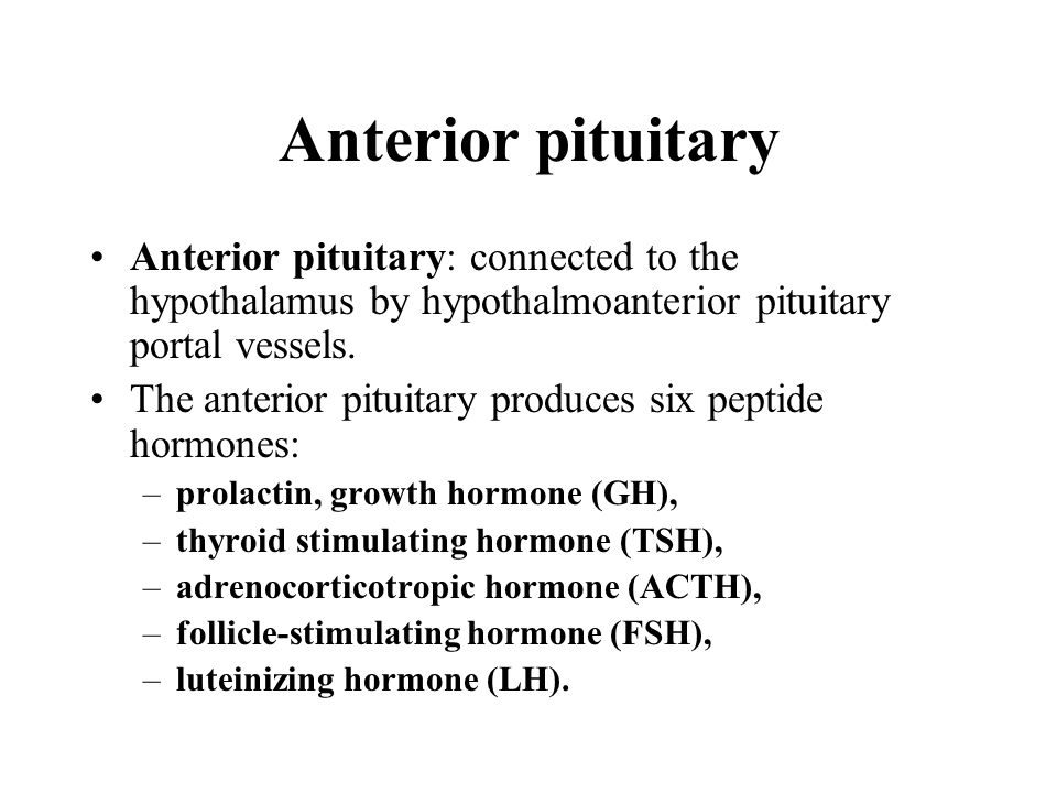 Anterior pituitary Anterior pituitary: connected to the hypothalamus by hypothalmoanterior pituitary portal vessels. The anterior pituitary produces s