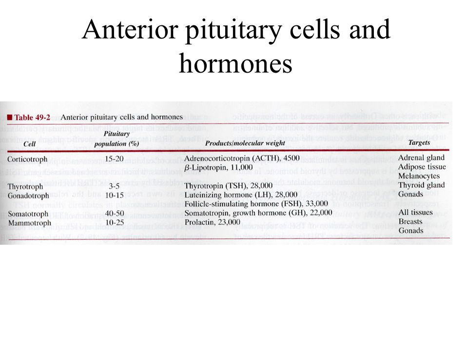 Anterior pituitary cells and hormones