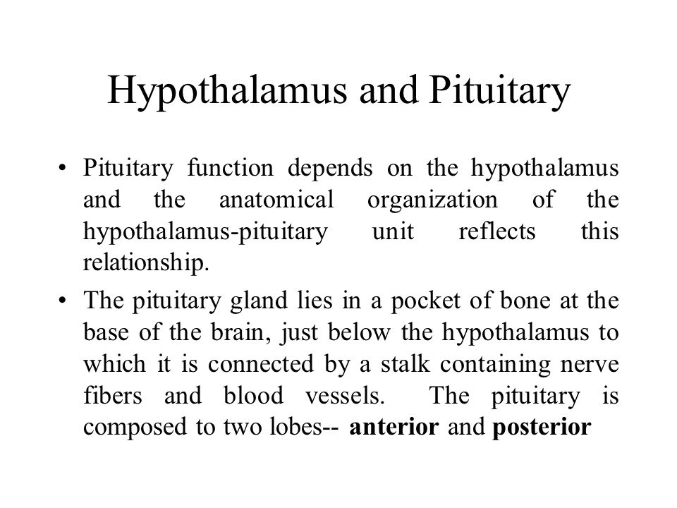 Posterior Pituitary: neurohypophysis Posterior pituitary: an outgrowth of the hypothalamus composed of neural tissue.