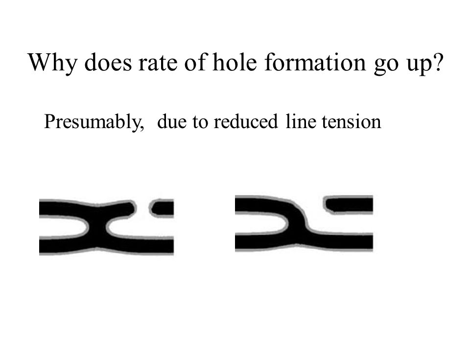 Why does rate of hole formation go up Presumably, due to reduced line tension