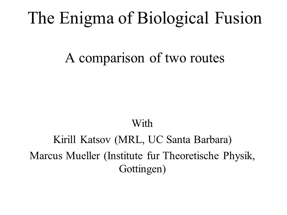 The Enigma of Biological Fusion A comparison of two routes With Kirill Katsov (MRL, UC Santa Barbara) Marcus Mueller (Institute fur Theoretische Physik, Gottingen)