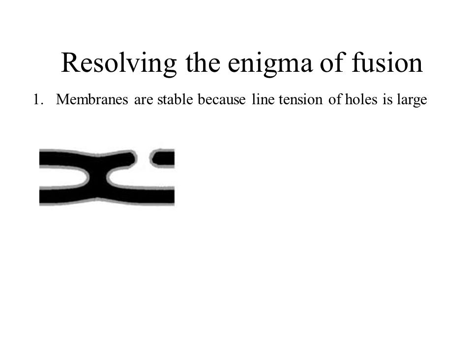 Resolving the enigma of fusion 1.Membranes are stable because line tension of holes is large