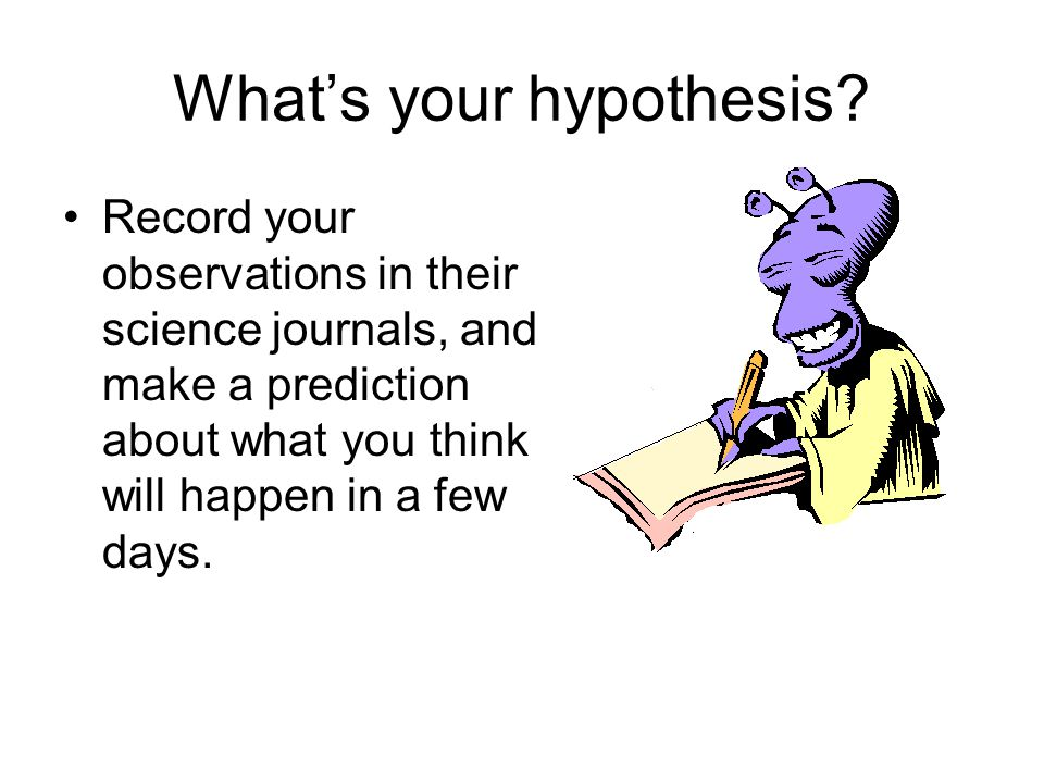 What's your hypothesis? Record your observations in their science journals, and make a prediction about what you think will happen in a few days.