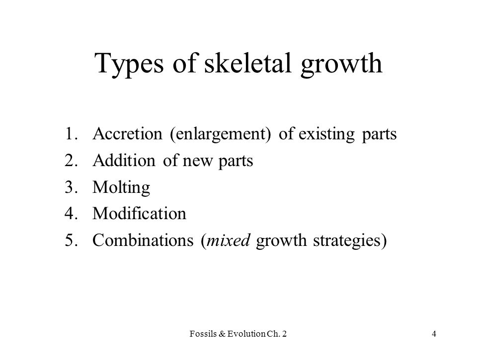 Fossils & Evolution Ch.225 Why is anisometric growth common.