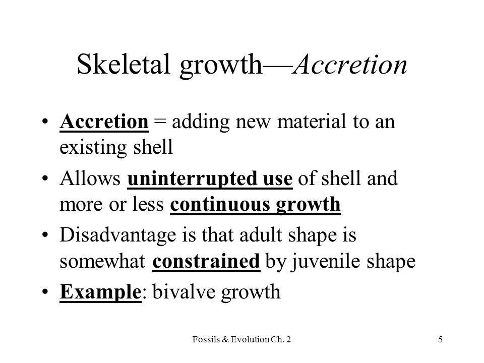 Fossils & Evolution Ch. 26 Bivalve accretion