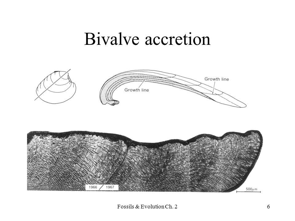 Fossils & Evolution Ch.