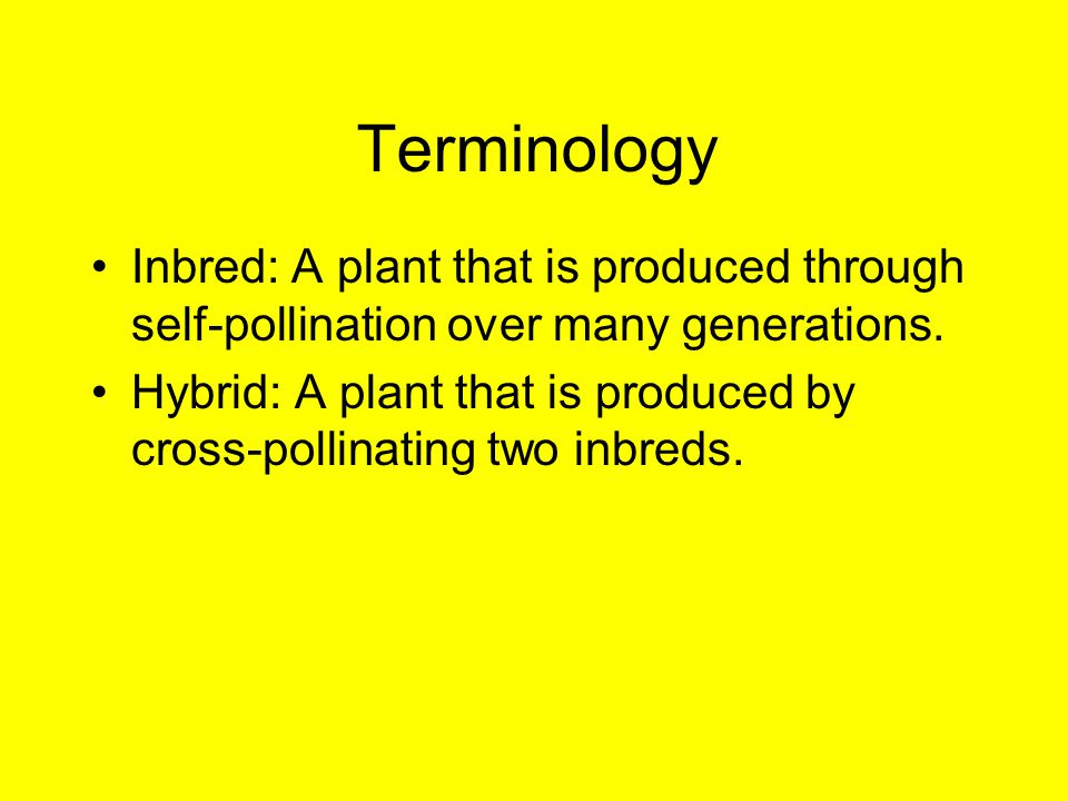 Terminology Inbred: A plant that is produced through self-pollination over many generations.