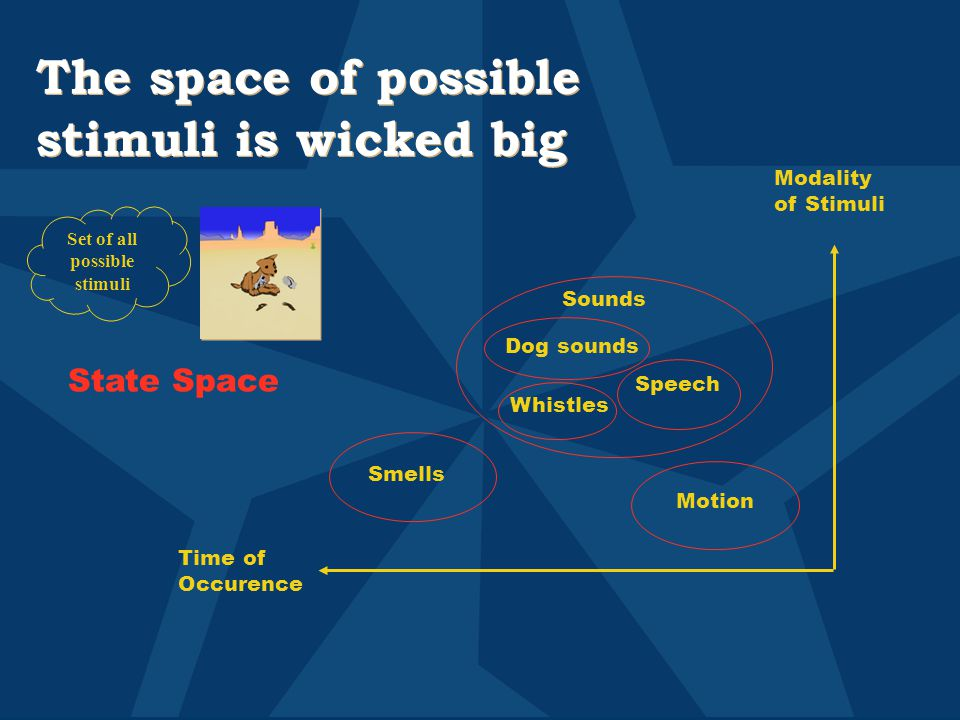 The space of possible stimuli is wicked big Set of all possible stimuli Smells Motion Sounds Dog sounds Speech Whistles Modality of Stimuli Time of Occurence State Space