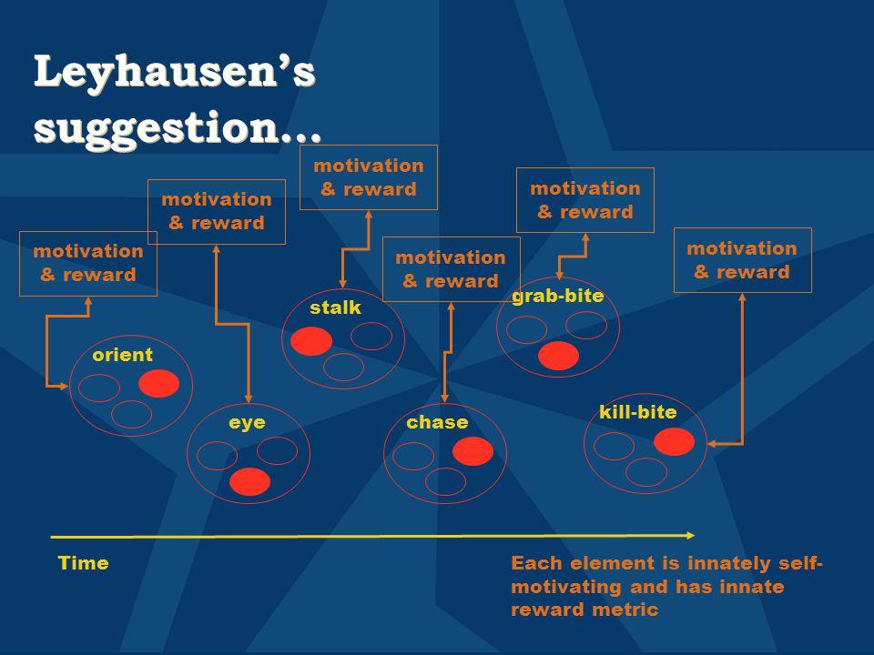 Leyhausen's suggestion… stalk grab-bite eye orient kill-bite chase TimeEach element is innately self- motivating and has innate reward metric motivation & reward
