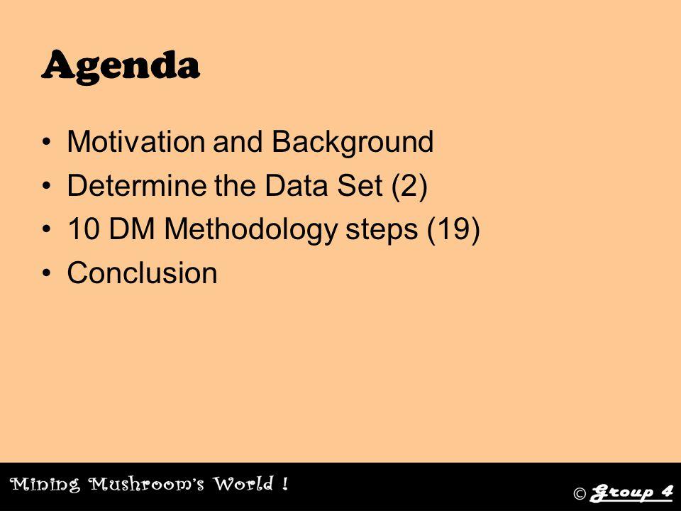 10 DM Methodology steps Step 8.